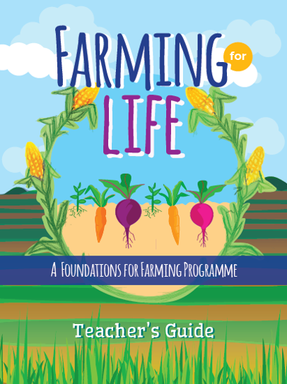 This programme combines rich Scripture engagement with instruction for young people in the techniques needed to sustainably grow food for their families and communities.